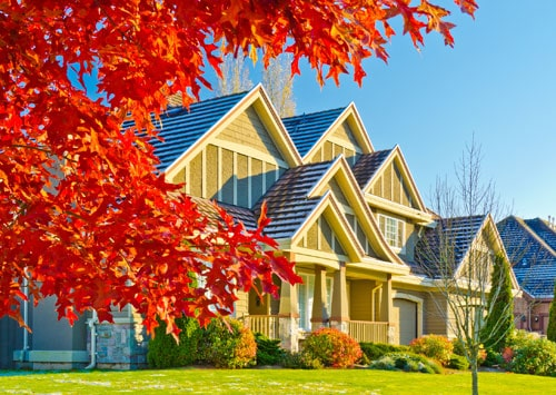Thornhill Real Estate, FAY TSATSKINA REALTOR